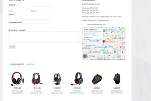 Website  business 304